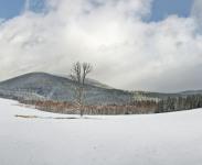 Panorama_Srni